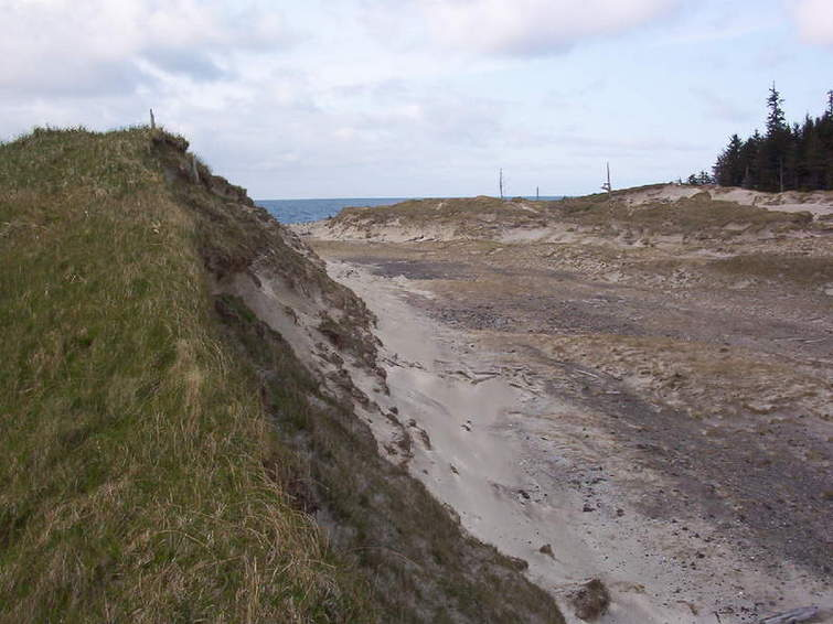 Sand dunes between Guise Bay and Experiment Bight